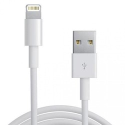 Picture of Apple iPhone 6 Plus Lightning to USB Cable