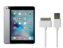 Picture for category iPad Mini 3 Charger And Adapter